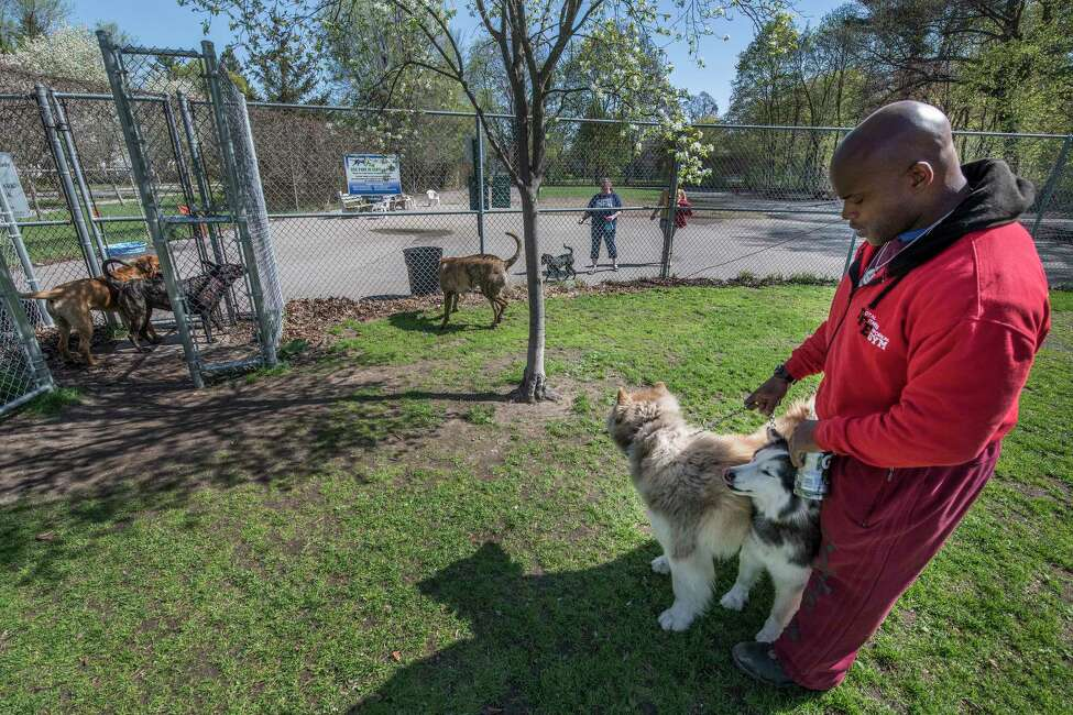 Ben White lets his furry friends out of his car for play time and heads to the Dog Park in Central Park Tuesday May 8, 2018 in Schenectady, N.Y. (Skip Dickstein/Times Union)