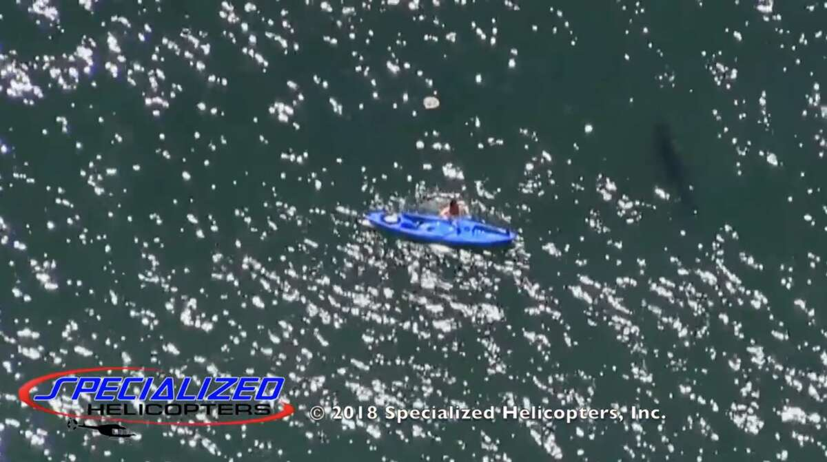 A kayaker fell into the water while paddling near a great white shark on Tuesday, May 8, 2018 near Seacliff State Beach in Aptos.