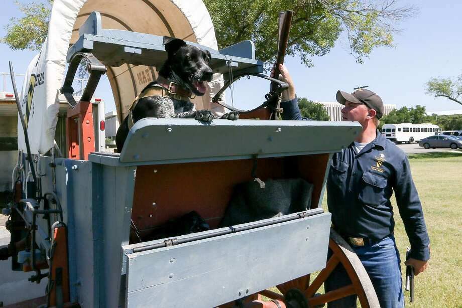 Pvt. Bouncer, a blue heeler mix, takes his post as Spc. Jacob Schultz loads the wagon in preparation for the 1st Cavalry Division Horse Cavalry Detachment charge. Photo: Marvin Pfeiffer /San Antonio Express-News / Express-News 2018