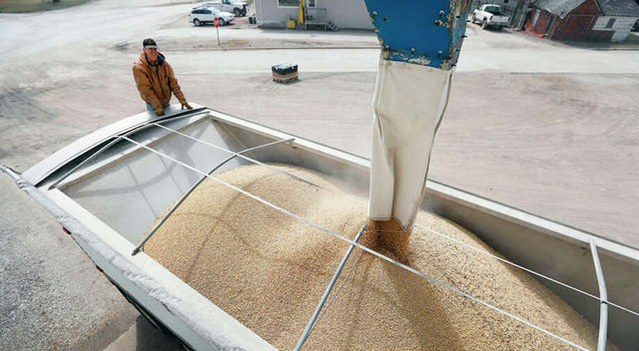 Terry Morrison of Earlham, Iowa, watches as soybeans are loaded into his trailer. With the threat of tariffs and counter-tariffs between Washington and Beijing looming, Chinese buyers are canceling orders for U.S. soybeans, a trend that could deal a blow to American farmers if it continues.
