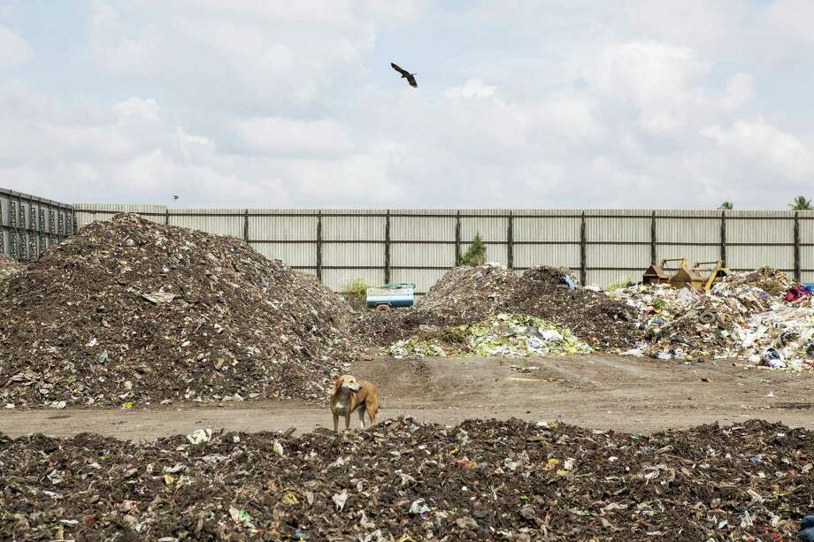 A dog stands among non-segregated waste at a compost plant in Mysuru, India, on Nov. 21, 2017. Photo: Bloomberg Photo By Samyukta Lakshmi. / © 2018 Bloomberg Finance LP