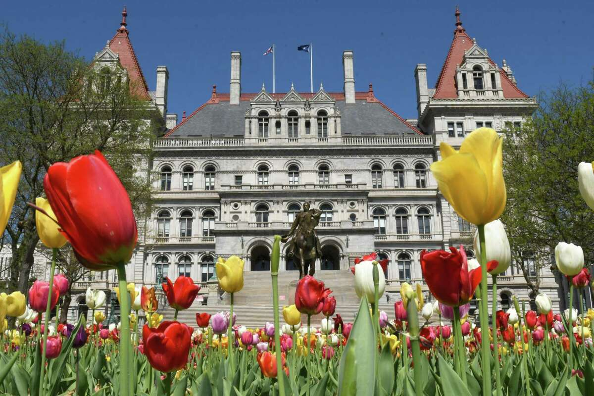 According to WalletHub rankings, New York is the fifth most diverse of the 50 states. The Capital Region ranks as the 90th most diverse among small cities. Keep clicking to see New York's ranking in other diversity areas and Albany's rank, where available, among 501 cities nationwide. The lower the number, the more diverse a place is.