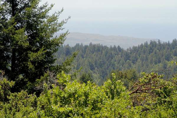 A hike at�El Corde de Madera Open Space Preserve can lead to Vista Point for this view and a picnic site perched on a 2,200-foot ridge