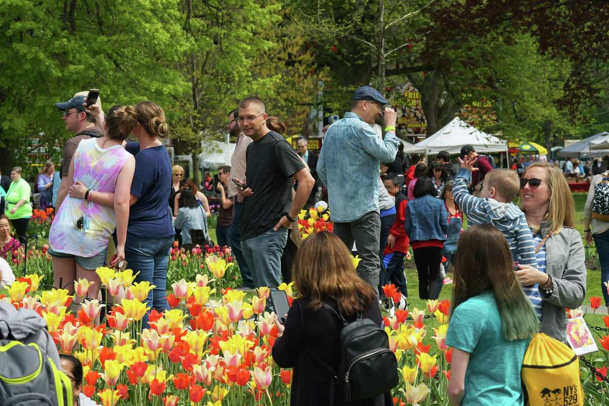 The 71st annual Tulip Festival will be Saturday and Sunday, May 11-12, 2019, at Washington Park in Albany, N.Y.(Paul Buckowski/Times Union)