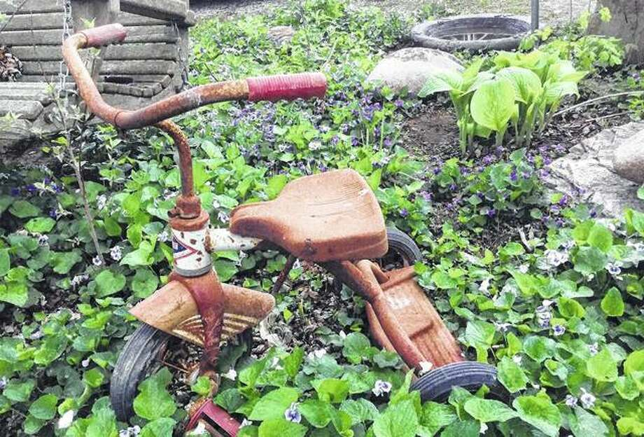 Fifty-six years later, an old tricycle has become a garden memory instead of a toddler's hot rod.