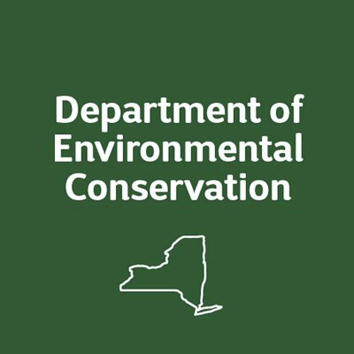 State forest rangers undertook several rescue efforts around the Adirondack and Catskill mountains