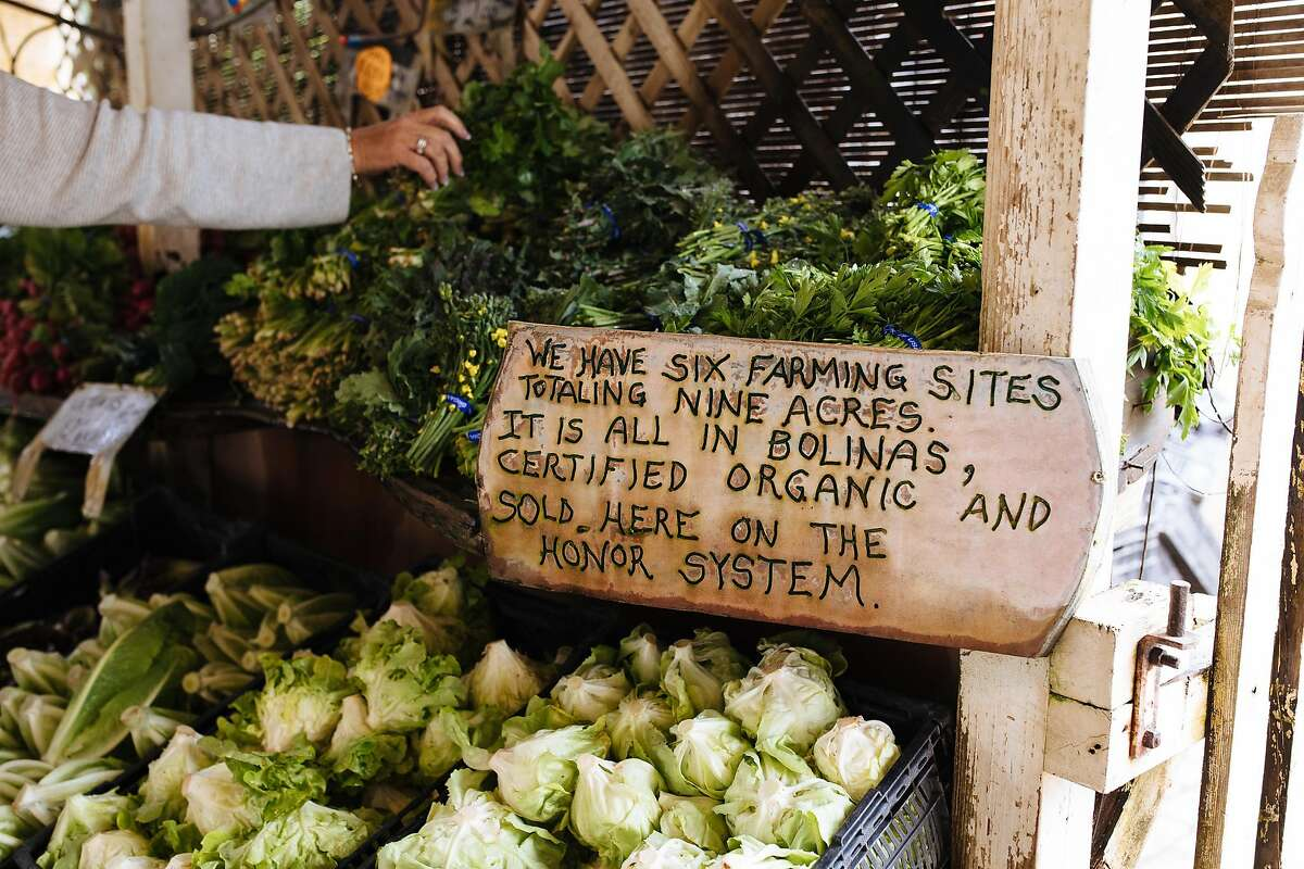 Customers pick up produce at the Gospel Flats farm stand in Bolinas.