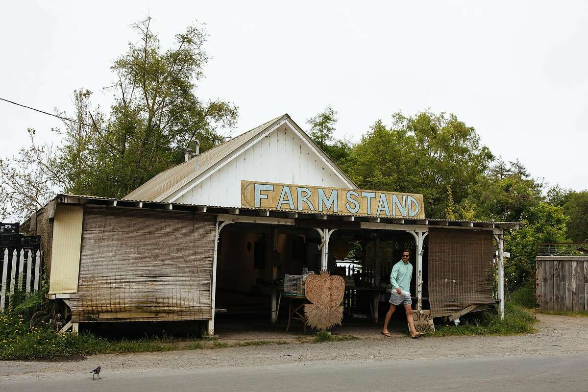 The Gospel Flats farm stand in Bolinas.