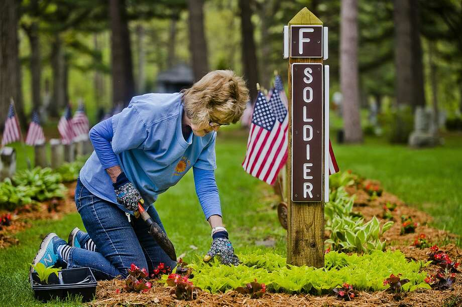 Charlaine McDermott of Midland, a member of the Chemical City Garden Club, tends to a flower bed in the veterans' section at the Midland Cemetery on Orchard Drive on Monday, May 14, 2018. The club is hosting a plant sale this Friday from 8 a.m. - 5 p.m. at 2110 Laurel Lane. (Katy Kildee/kkildee@mdn.net) Photo: (Katy Kildee/kkildee@mdn.net)