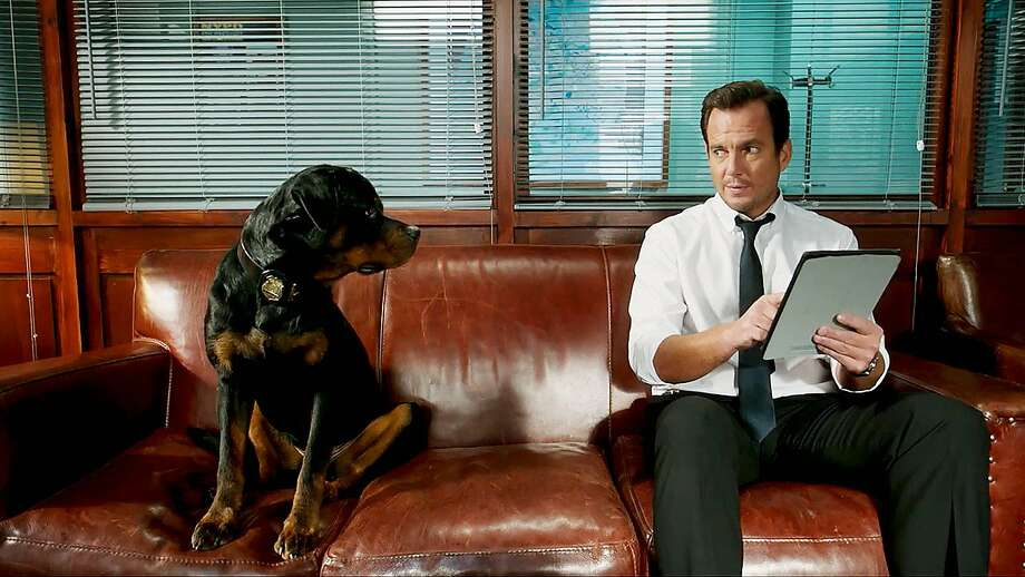 "Chris ""Ludacris"" Bridges voices a K-9 who goes undercover with human partner Will Arnett in ""Show Dogs."" Photo: Global Road Entertainment"