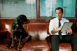 "Chris ""Ludacris"" Bridges voices a police dog Rottweiler and Will Arnett stars in the comedy ""Show Dogs"""
