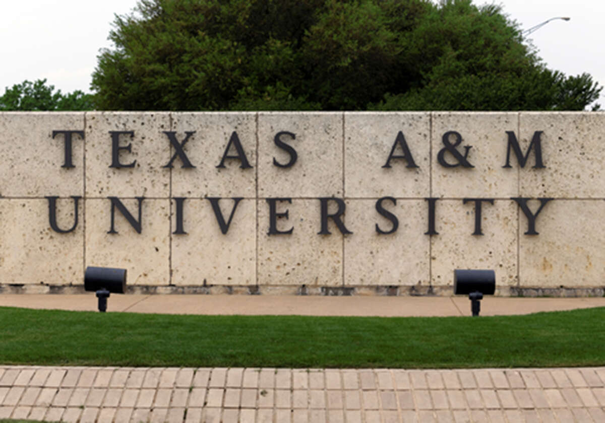 PETA says Texas A&M violated the First Amendment by filtering out comments about the university's Canine Research Lab.Scroll through to see graphic images from an undercover video PETA took at a Texas alligator farm