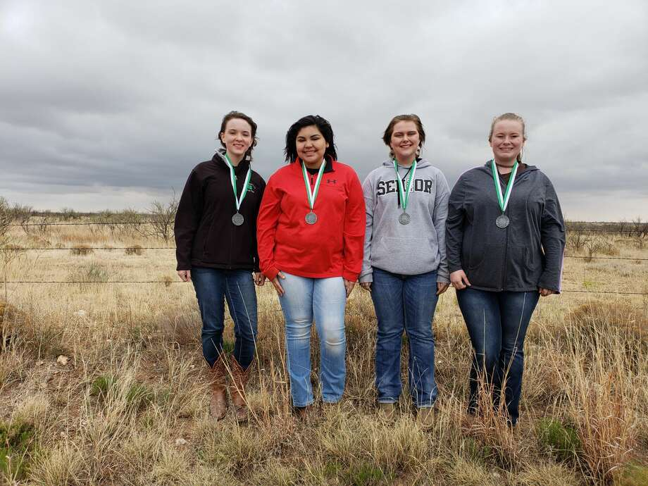 Hale County 4-H Senior Soil Judging Team finished second in district. Team members include DeLynn Gary (left), Desiree DeLeon, Emily White and Camrie Looney. Photo: Beverly Wall/Courtesy Photo