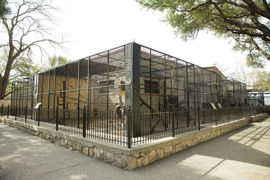 The San Antonio Zoo's Monkey House building has featured more than 16 species for more than 60 years. The zoo plans toclose the building for a makeover as  part of an ongoing habitat renovation project. Photo: Photo Courtesy Of The San Antonio Zoo. / Robert Stofa    2015