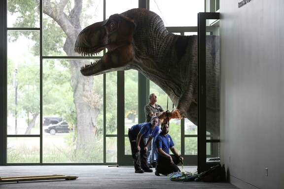 """A Tyrannosaurus Rex pokes its head into the Mays Family Center at Witte Museum, site of the big summer exhibit, """"Predators vs. Prey."""""""