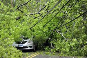 Fallen limbs buried a parked car in Brookfield during Tuesday's storm.