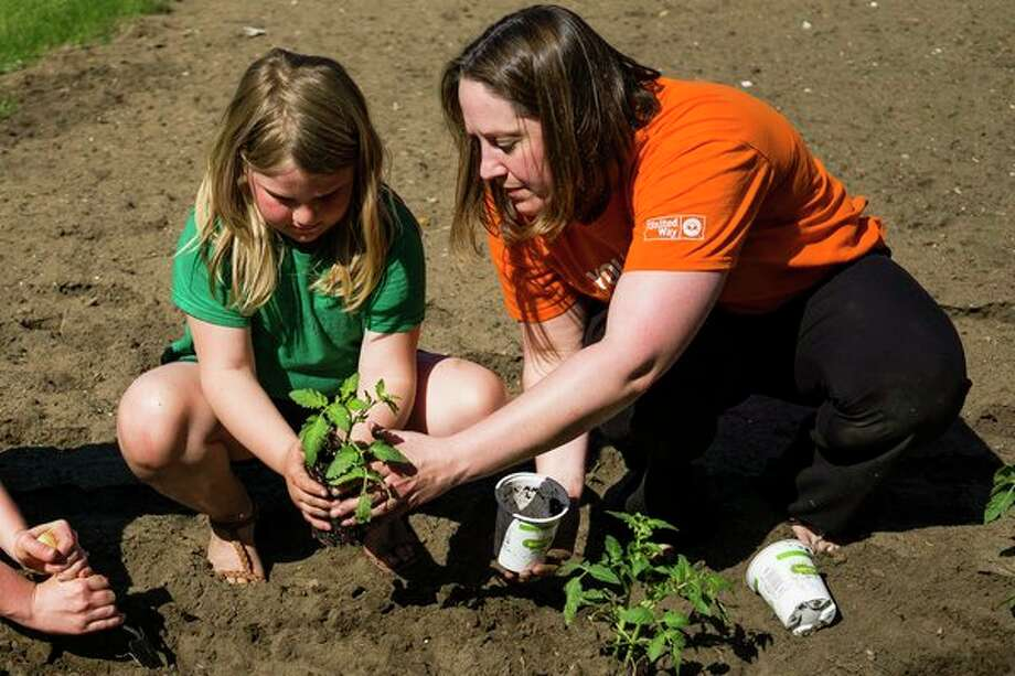 Jenni Bush, right, helps Marguerite Robel, 8, while they plant tomatoes in a community garden on Wednesday afternoon alongside other volunteers from Young Leaders United. The garden, located on Ashman Street across from Memorial Presbyterian Church, is one of seven across Midland which will provide produce for the Midland Fresh mobile food stand. (Katy Kildee/kkildee@mdn.net)