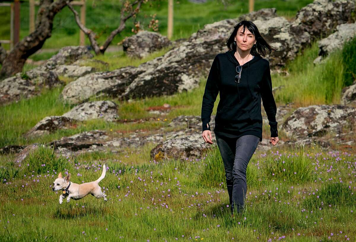 """Leslie Caccamese with her dog """"Twinkle"""" on the property she once owned where she wanted to plant a vineyard in Napa, Calif. is seen on March 31st, 2018."""
