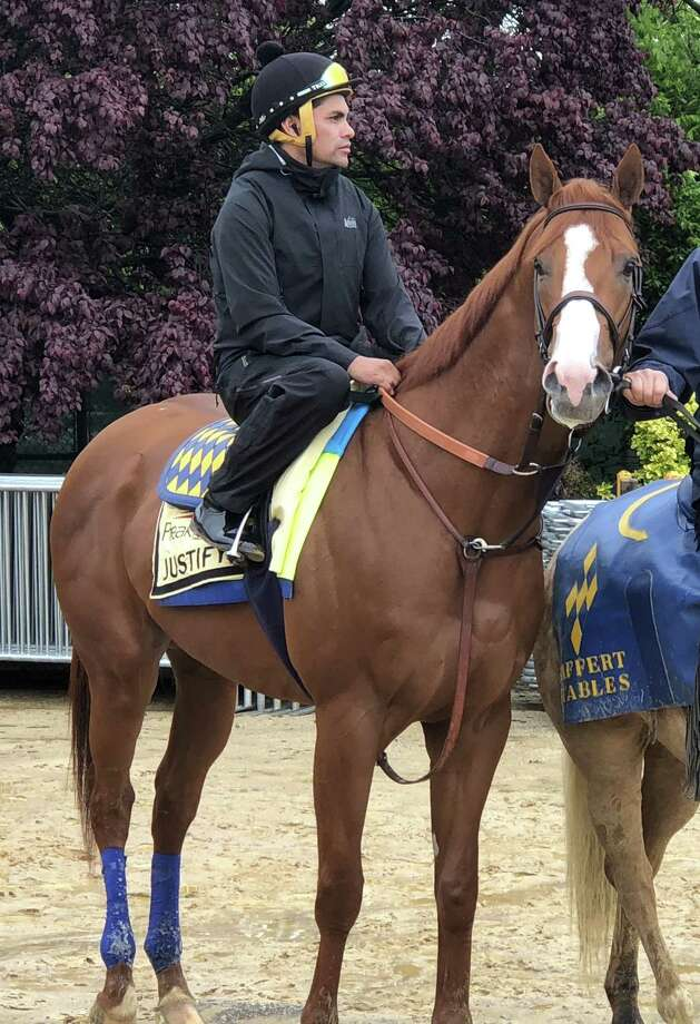 On a cold, rainy Thursday morning, Kentucky Derby winner Justify said hello to Pimlico Race Course for the first time. The big chestnut was led out of the Stakes Barn at 8:30 a.m. with exercise rider Humberto Gomez on his back. Justify took in his surroundings as he waited to get on the sloppy track and then jogged around it twice as he prepares to continue his assault on the Triple Crown in the Preakness on Saturday. (Tim Wilkin / Times Union)