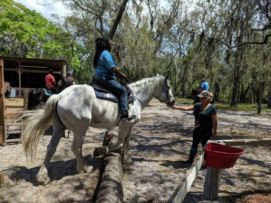 In The Breeze Ranch in suburban Hillsborough County, Fla., offers trail rides for all levels of rider, plus swimming with horses, horse camp, parties and more. (Tiffini Theisen/Orlando Sentinel/TNS) Photo: Tiffini Theisen / Orlando Sentinel