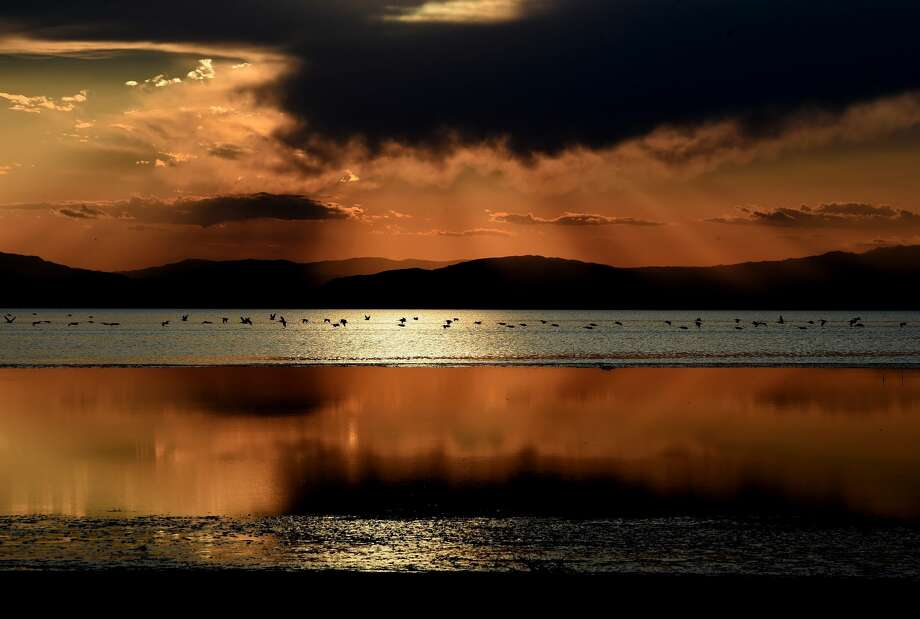California's largest lake is facing major environmental problems with a decreasing water level, increasing salinity and a new public health problem linked to airborne toxic dust left behind by the lake's receding water. Photo: MARK RALSTON/AFP/Getty Images