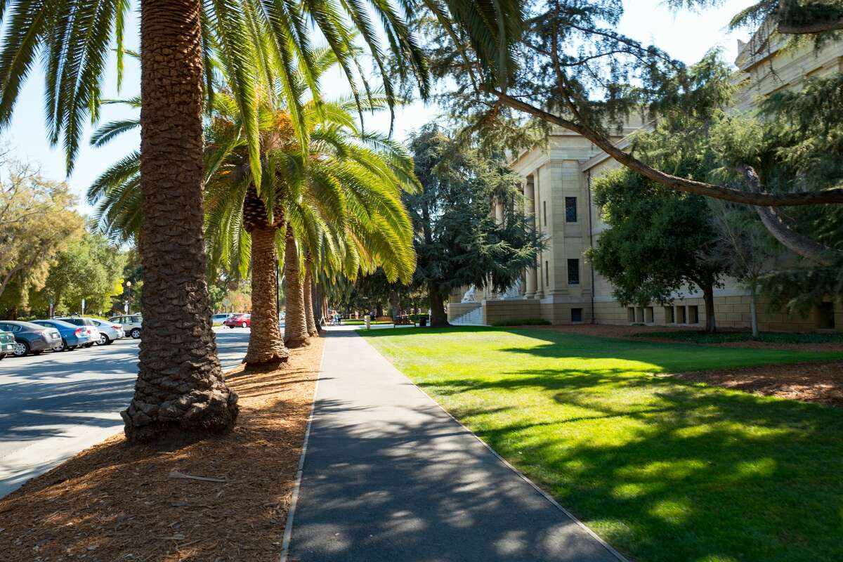 Walkway passing a row of palm trees and a manicured green lawn outside the Cantor Arts Center on a sunny day on the campus of Stanford University in Stanford, Calif.