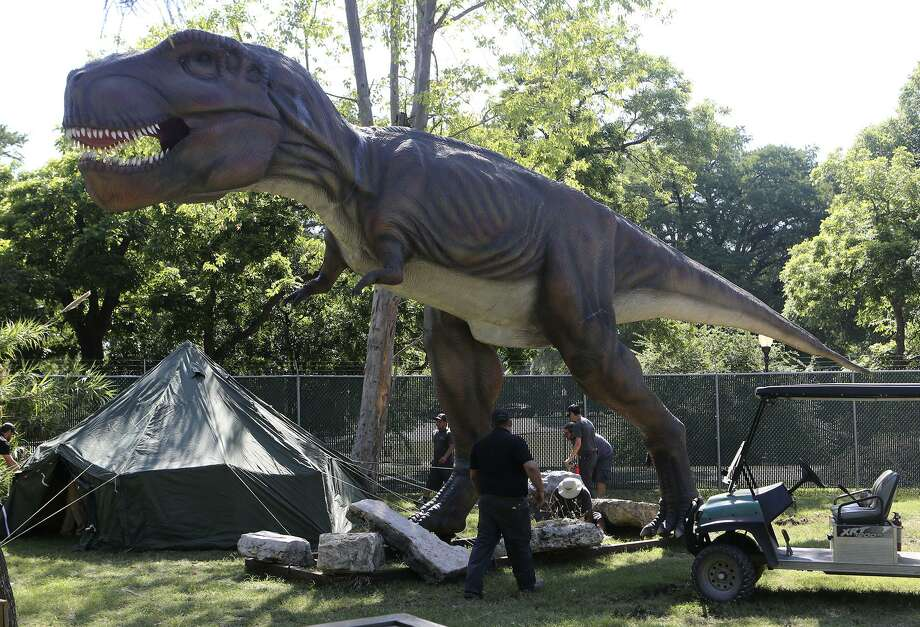A Tyrannosaurus rex is part of a new dinosaur exhibit at the San Antonio Zoo. Photo: JOHN DAVENPORT /San Antonio Express-News / ©John Davenport/San Antonio Express-News