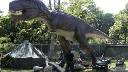 A Tyrannosaurus rex is part of a new dinosaur exhibit at the San Antonio Zoo.