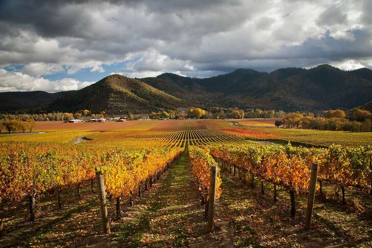 Del Rio Vineyards in Gold Hill, Ore., is 300-acre vineyard on the bank of the Rogue River, 20 minutes northwest of Medford.