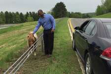 State Police Investigator Don Winn poses with a runaway pony in Columbia County, N.Y., after safely capturing the animal on the Taconic State Parkway on May 22, 2018.