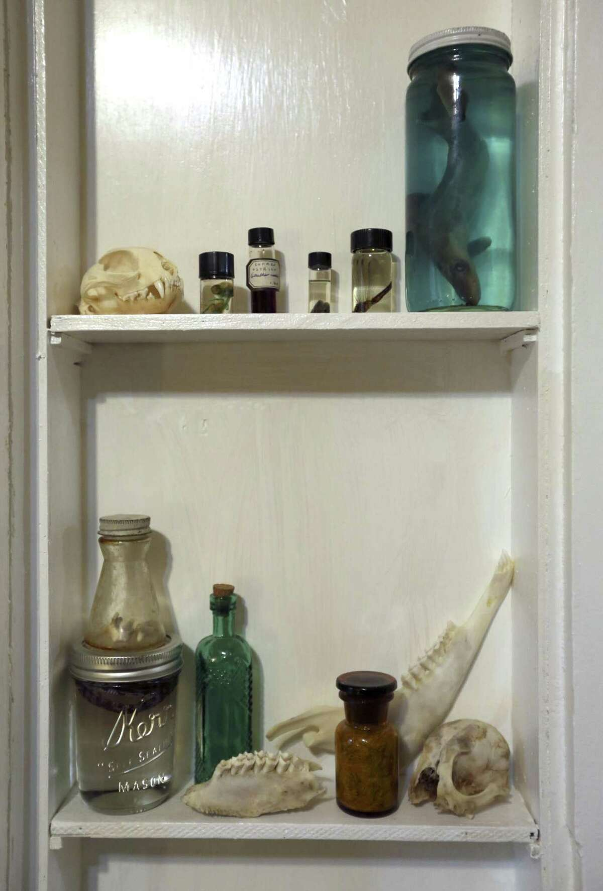 Stephen and Fred Garza-Guzman keep small objects like a preserved shark, upper right, and a jaw bone, lower, in a converted, built-in ironing board nook in their bedroom.