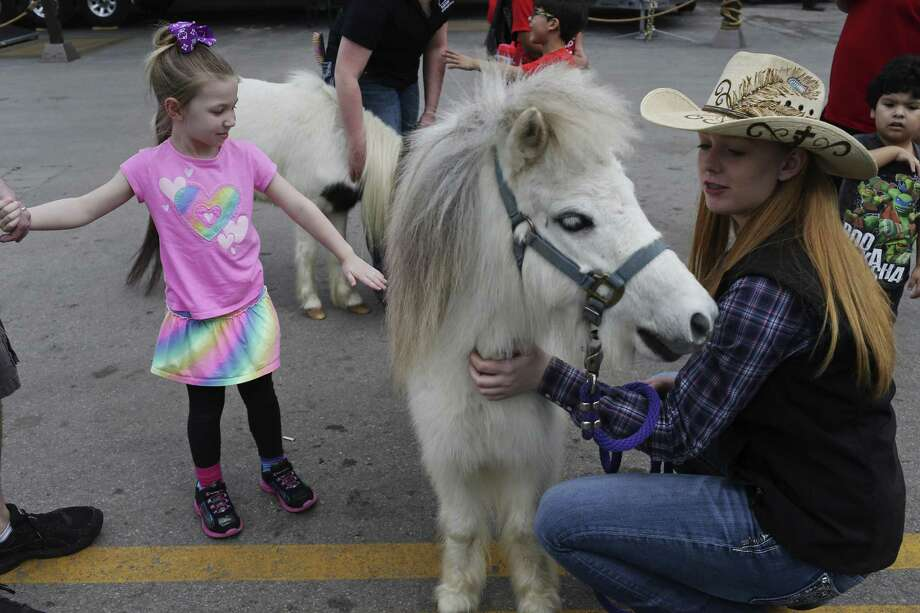 Five-year-old Natalie Premo pets a miniature horse held by Kaitlyn Glass, at the San Antonio Stock Show and Rodeo, Sunday, Feb. 19, 2017. Glass and the miniature horse are with the Texas 4-H Equine Ambassadors of the Texas A&M AgriLife Extension. Photo: JERRY LARA, Staff / San Antonio Express-News / © 2017 San Antonio Express-News