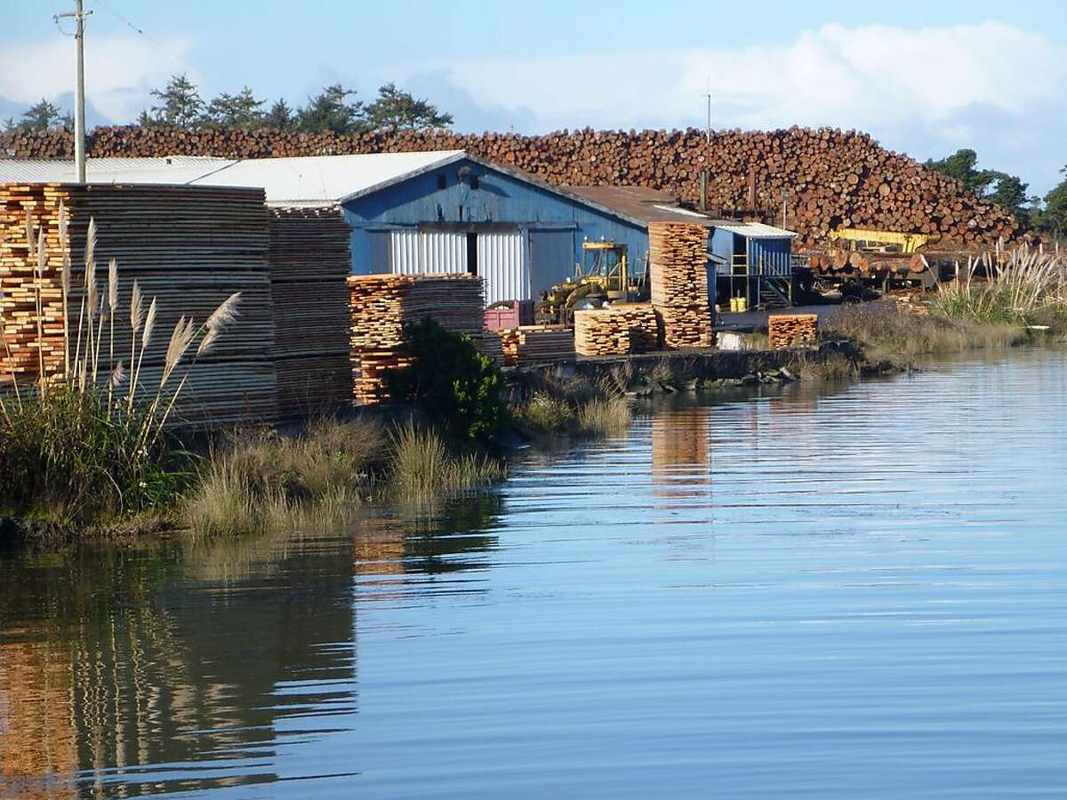 Humboldt Bay, polluted with cancer-causing dioxin from lumber mills, is scheduled for cleanup by 2019, but so far state agencies have made little progress.