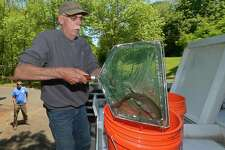 Rowledge Pond Aquaculture employee Steve Edwards prepares grass carp to be introduced into the pond at Flax Hill Park Thursday, May 24, 2018, as The Norwalk Recreation and Parks Department interim director Ken Hughes look on in Norwalk, Conn. The Norwalk Recreation and Parks Department purchased 10 live grass carp that are meant to reduce the algae in the pond.