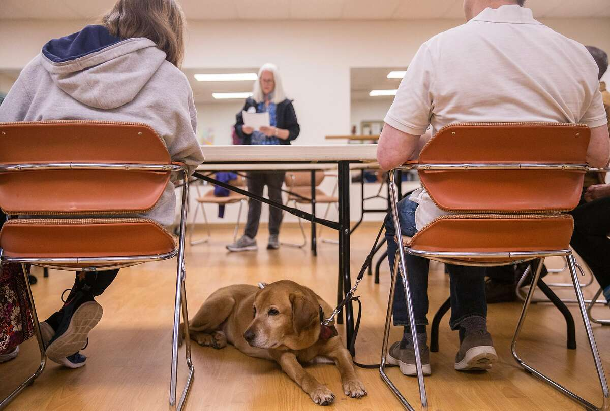 Jeff Harrington's guide dog Lucas sits underneath a table during a fire safety training session for the blind community at the Earle Baum Center in Santa Rosa, Calif. Thursday, May 3, 2018