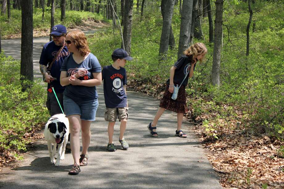 Crowds gathered at the Huron County Nature Center for the annual Lady's Slipper Festival Saturday afternoon. Many visitors counted how many they could find, with many reportedly seeing dozens of the protected orchid. Photo: Brenda Battel Huron Daily Tribune