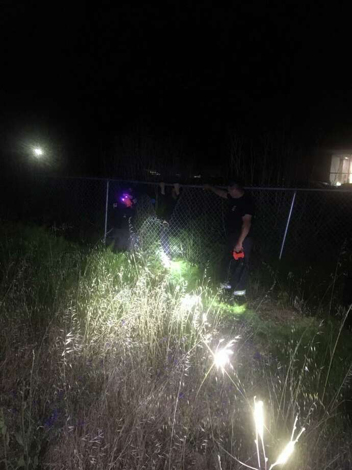 Napa police and firefighters rescued a man who fell into a bush early Saturday. Photo: Napa Police Department