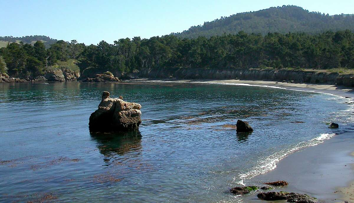 Whaler's Cove at Point Lobos State Natural Reserve is gorgeous, provides a chance to sight sea otters, and for scuba divers, provides some of the best fish watching near the kelp beds outside of an aquarium on the Pacific Coast