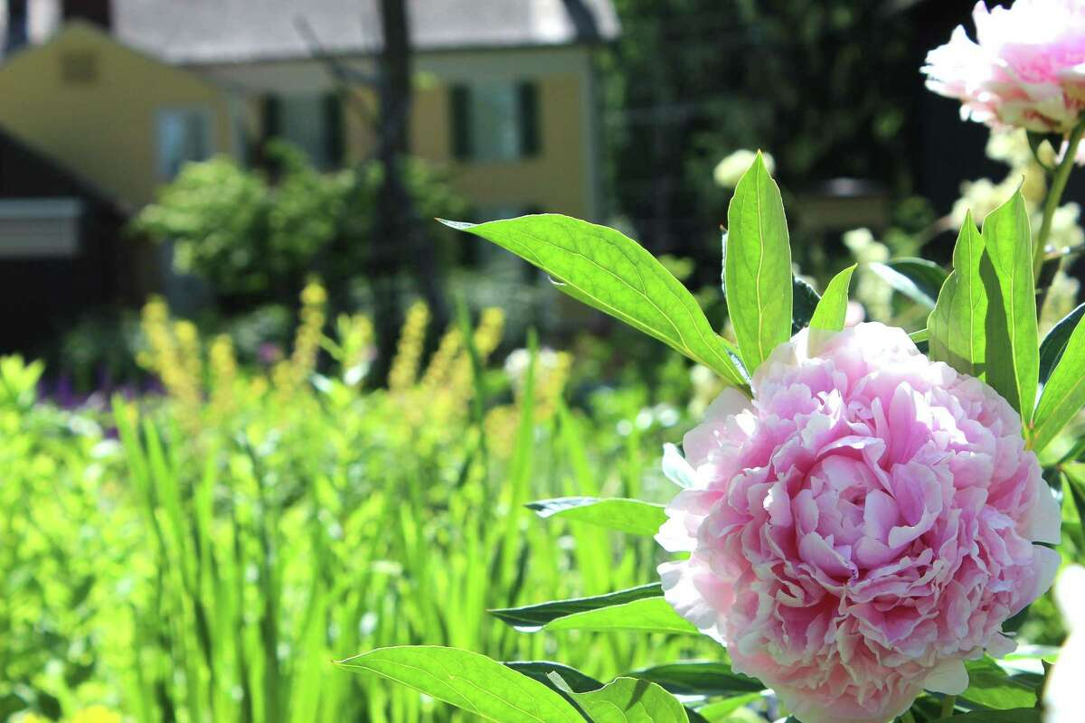 The Florence Griswold mansion, art museum and historic gardens in Old Lyme will celebrate GardenFest June 8-17 with several special events, indoors and out.