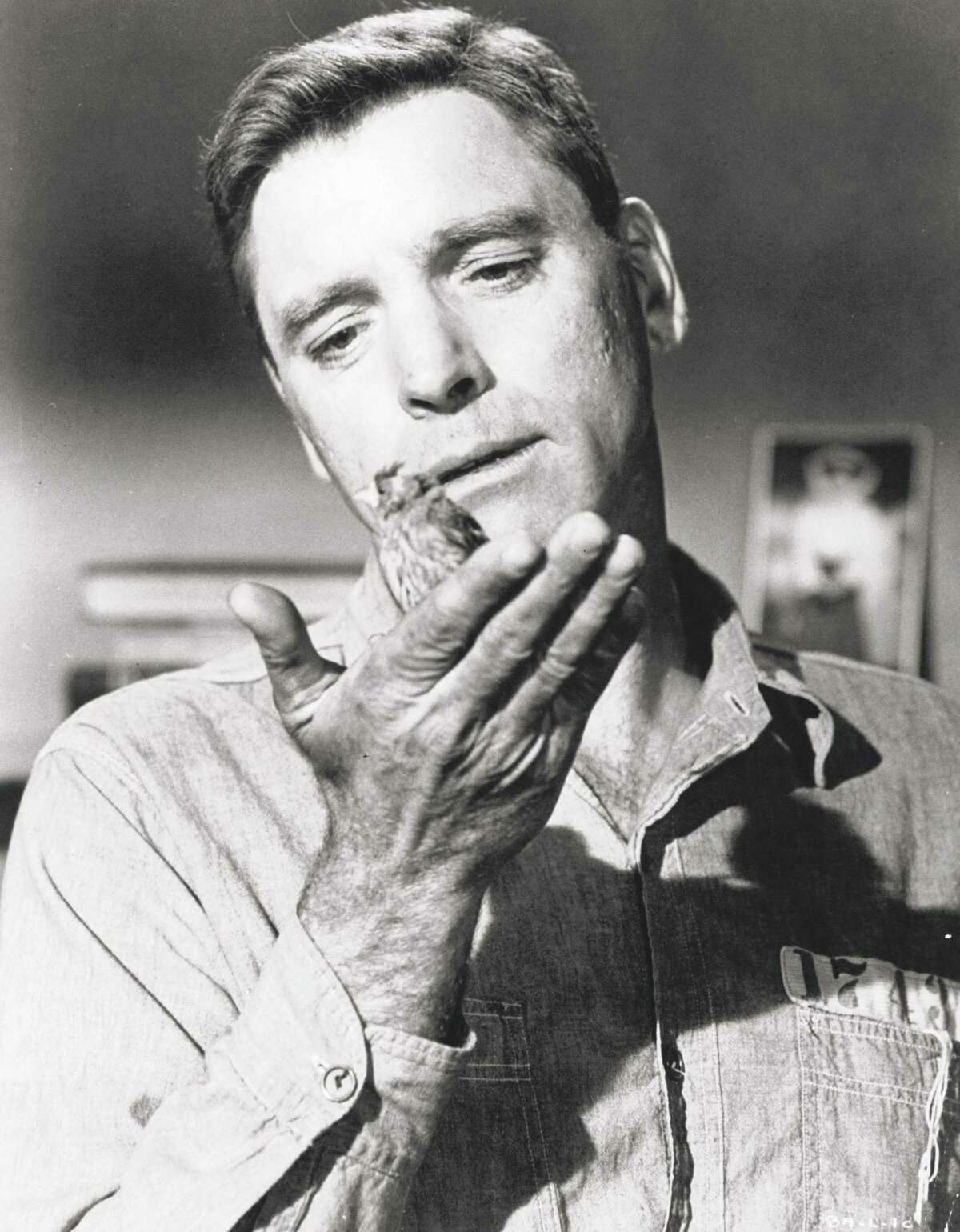 """A case can be made for """"Birdman of Alcatraz"""" as one of Burt Lancaster's top films."""