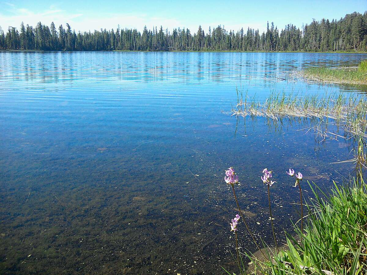 Laurel Lake is located at 6,490 feet in the Yosemite Wilderness, now accessible for summer. From the trailhead at Eleanor Lake, hiking to Laurel Lake is an 8.2-mile hike, one-way, with a climb of 1,800 feet.