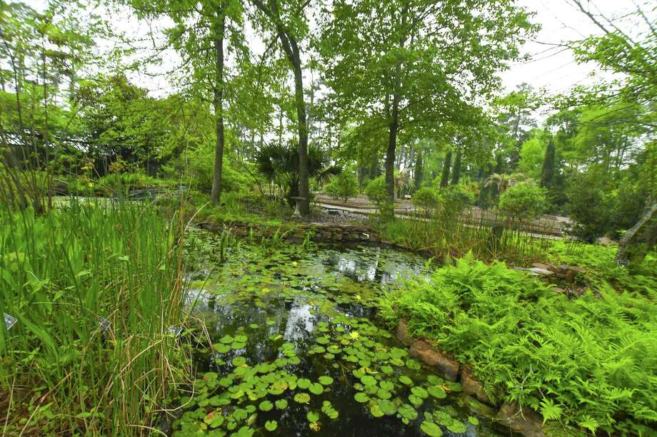 Mercer Botanic Gardens set to teach families about plants with ...