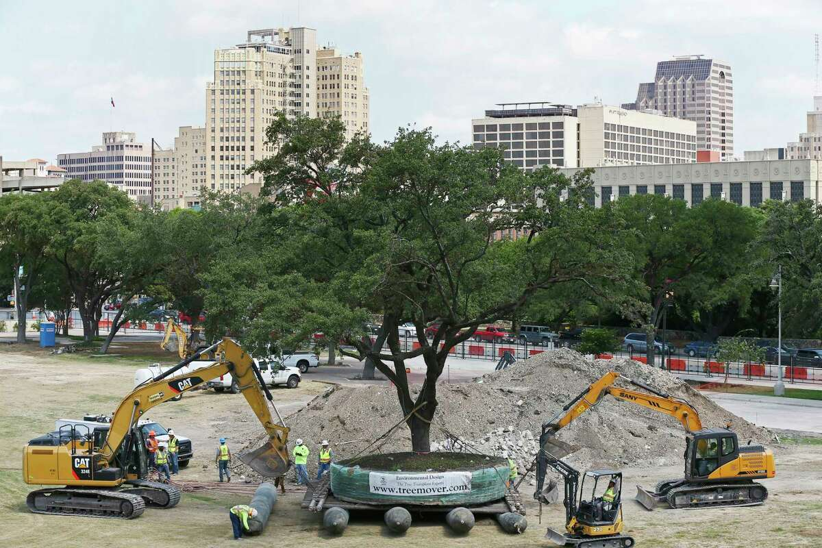 """Crews move a 70-year-old live oak at Hemisfair Plaza, Thursday, May 31, 2018. According to Anne Krause, President and Executive Director of Hemisfair Conservancy, the tree with its root ball weighed 122,000 pounds. The crew moved the tree from its location by East Market Street to the adjacent site of the future civic park. The conservancy received $550,000 in donations to save 18 trees at the park. """"We had gifts ranging in size from $8. Someone who is on a fixed income saying this is all I have but I want to be a part of it. All the way up to a $400,000 gift,"""" said Krause. She added that by the time the park opens in 2021, the park will have a total of 246 shade-producing trees, including 31 saved trees and 215 that'll be purchased."""