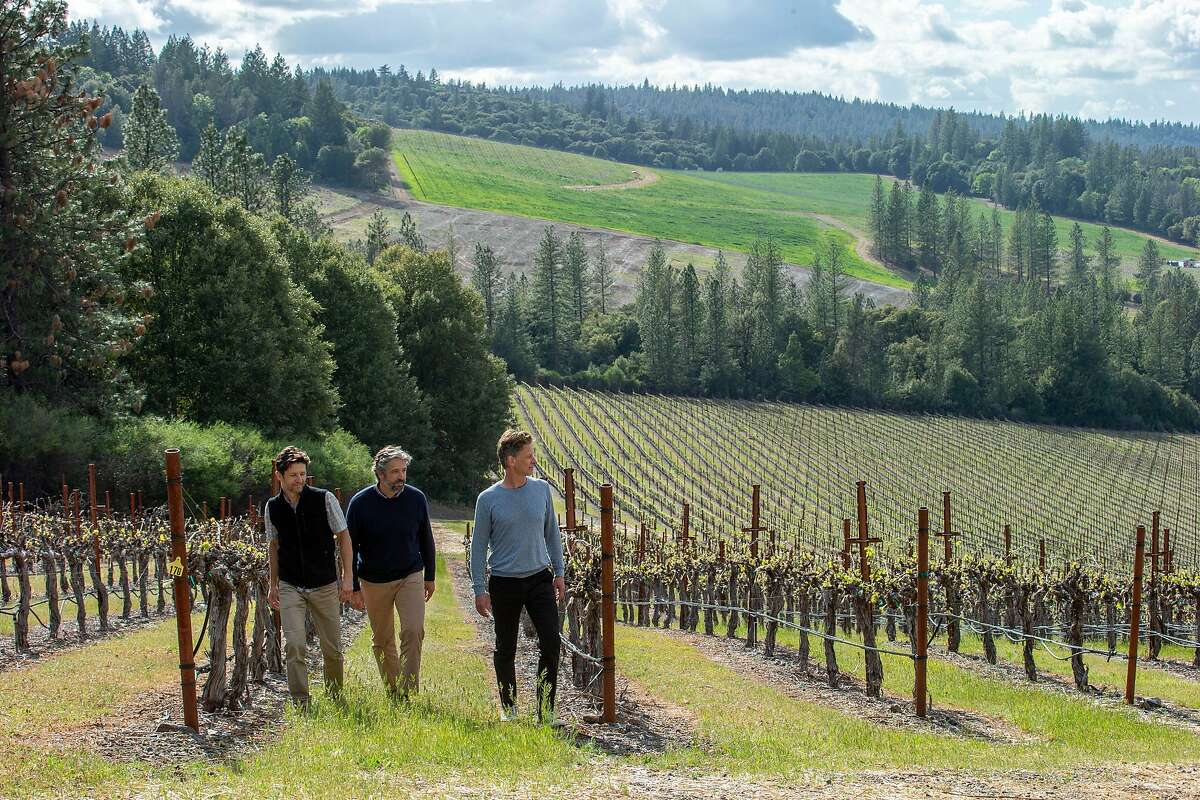 The Molnar brothers, with their winemaker Michael Terrien (right), are in the process of adding 140 acres of grapevines to their current 105-acre vineyard.