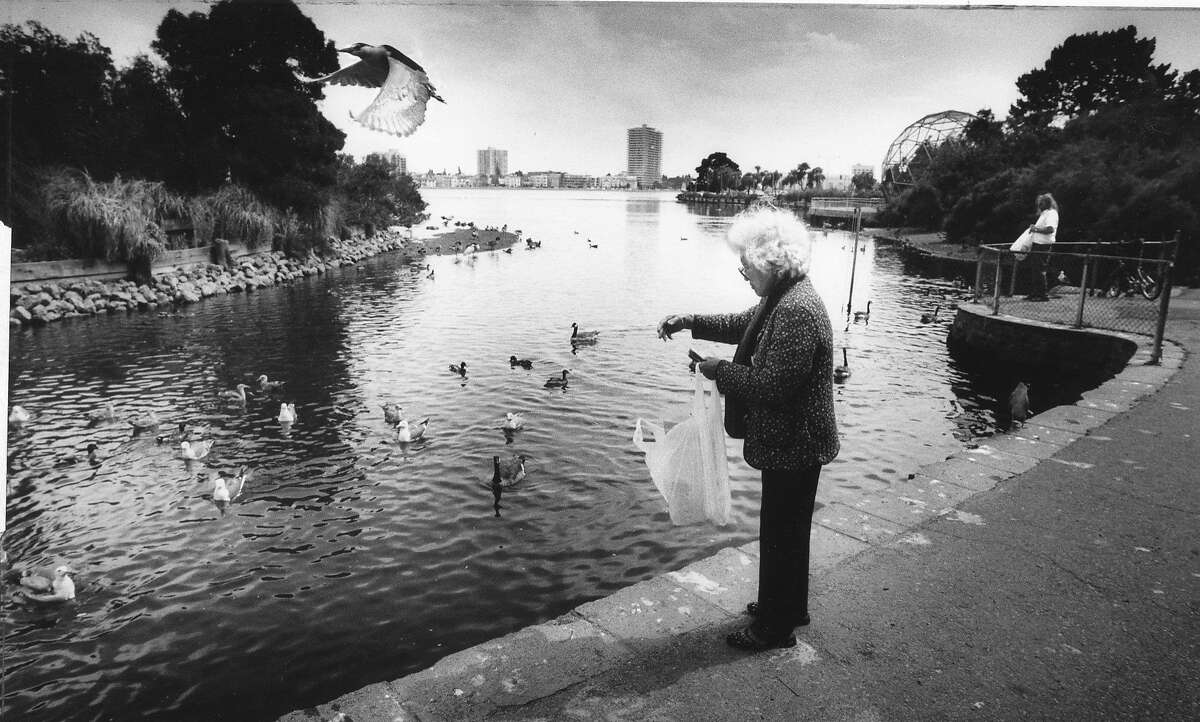 Felicidad Javier, of Oakland feeds the birds at the Lake Merritt bird sanctuary, June 11, 1986 Photo ran 06/12/1986, p. 3