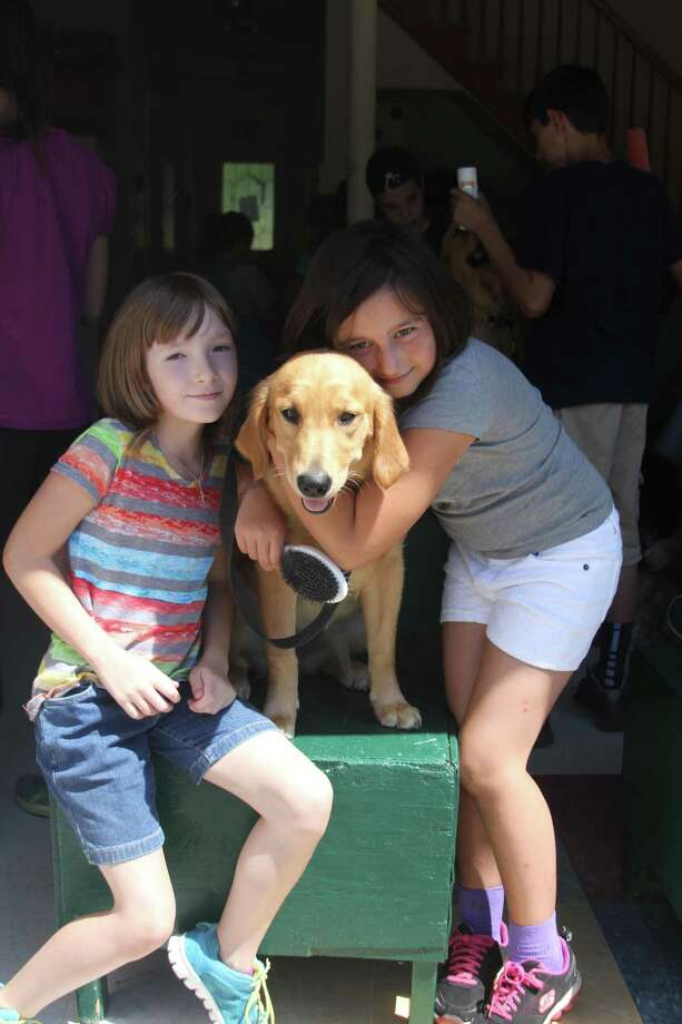 Children spend time with service dogs at last year's training camp. Photo: Contributed Photo