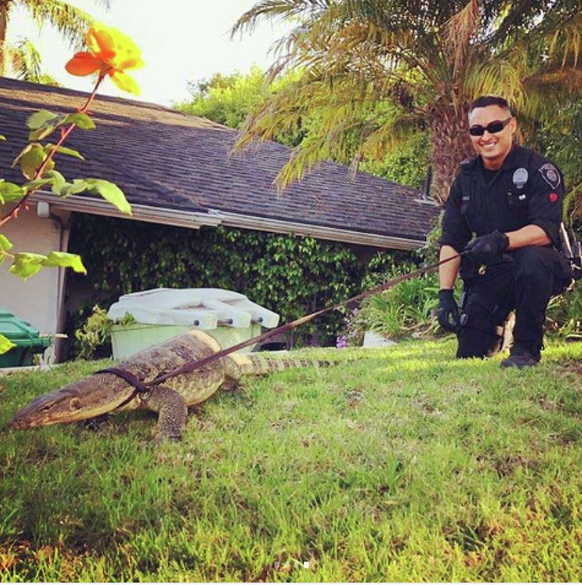 """Beverly Hills Police photographed with """"Stephan,"""" a mysterious creature they found wandering down Sharon Stone's neighborhood."""