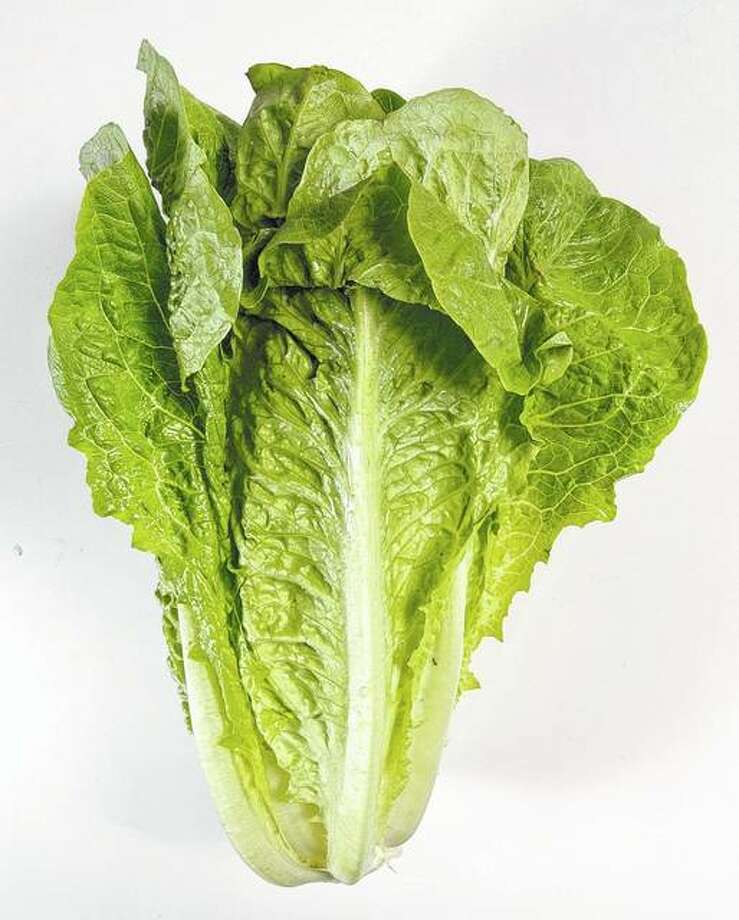 Romaine lettuce Photo:       Steve Campbell   Houston Chronicle Via AP