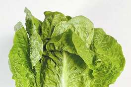 Four more deaths have been linked to a national romaine lettuce food poisoning outbreak, bringing the total to five, the U.S. Centers for Disease Control and Prevention said. The good news is that the growing season for the suspect lettuce ended weeks ago, meaning the danger from this particular outbreak should be in the past.