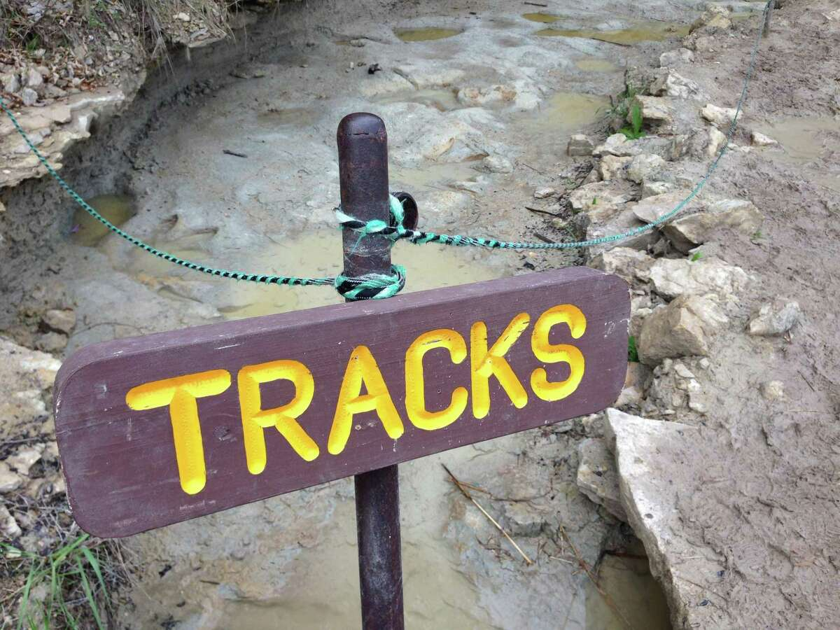 Well-preserved dinosaur tracks in the Paluxy River at Dinosaur Valley State Park in Glen Rose.
